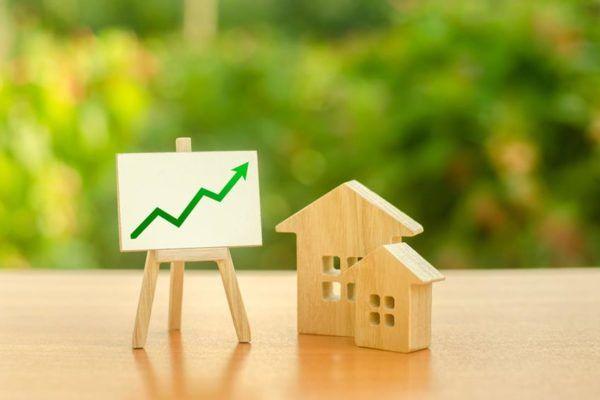 Inwestowanie w czasie kryzysu | Mzuri
